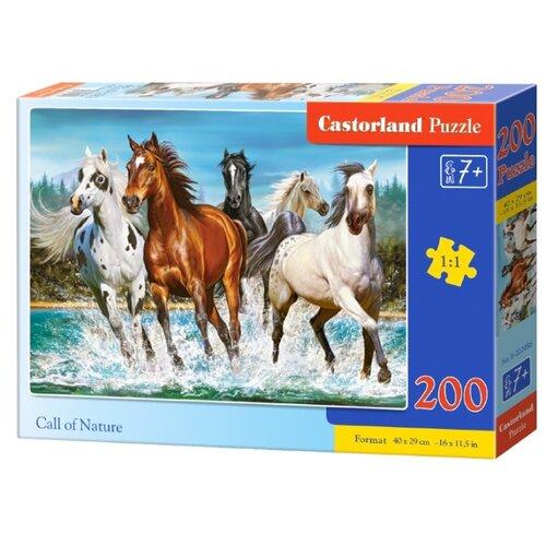 Купить Пазл Castorland Call Of Nature (B-222056), 200 дет., Пазлы