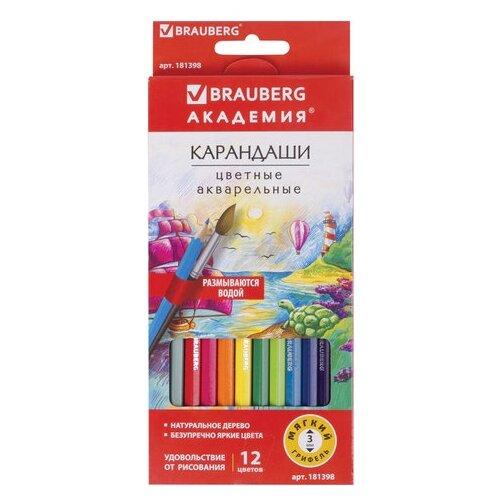 Купить BRAUBERG Карандаши цветные акварельные Академия 12 цветов (181398), Цветные карандаши