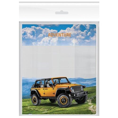 Купить ArtSpace Набор обложек для дневников и тетрадей 210x350 мм, 120 мкм, 3 штуки, с набором наклеек для подписи Джипы, Обложки
