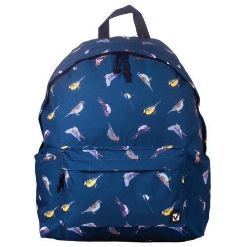 Купить BRAUBERG Рюкзак Птицы (226401), синий, Рюкзаки, ранцы
