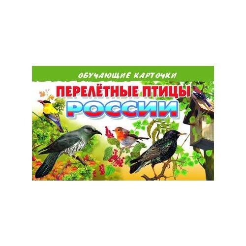 Купить Перелетные птицы России, Литур, Учебные пособия