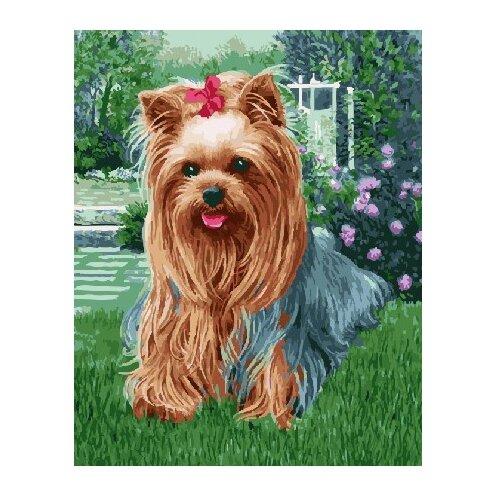 ВанГогВоМне Картина по номерам Милая собачка , 40х50 см (ZX 21567), Картины по номерам и контурам  - купить со скидкой