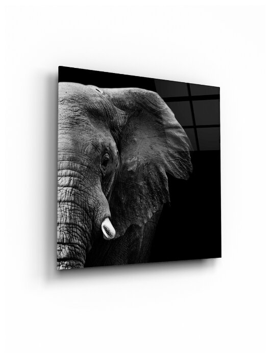 """Купить Картина на стекле """"Слон"""" по низкой цене с доставкой из Яндекс.Маркета"""