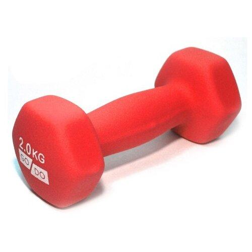 Гантель цельнолитая Go Do в неопреновой оболочке 2 кг красный гантель виниловая 1 кг go do 1 кг красный