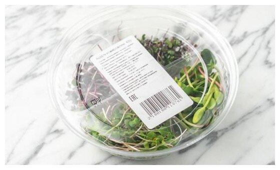 ВкусВилл Ассорти из микрозелени, контейнер пластиковый (Россия)