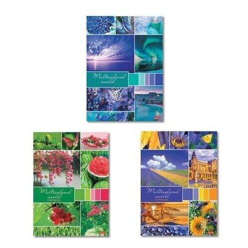Купить Hatber Тетрадь Разноцветный мир 96Т4В3, клетка, 96 л., разноцветный, Тетради