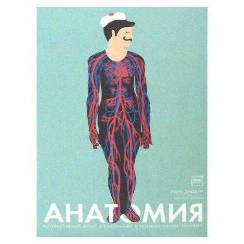Элен Дрювер Анатомия. 3-е изд. элен дрювер анатомия 3 е изд
