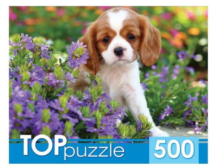 Пазл Рыжий кот TOP puzzle Милый спаниель (ГИТП500-4200), 500 дет.