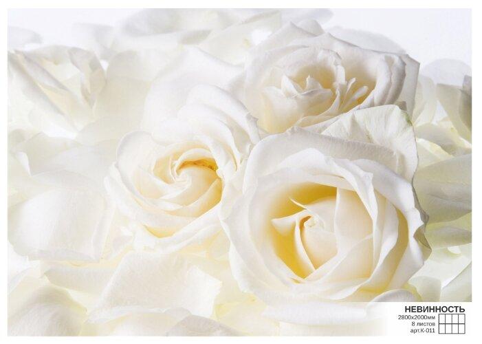 Фотообои бумажные Симфония Невинность К-011 2.8х2м