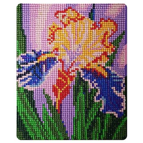 Color Kit Набор алмазной вышивки Прекрасный ирис (MP010) 17х21 см