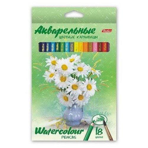 Купить Hatber акварельные цветные карандаши Букет, 18 цветов (BKa_18370), Цветные карандаши