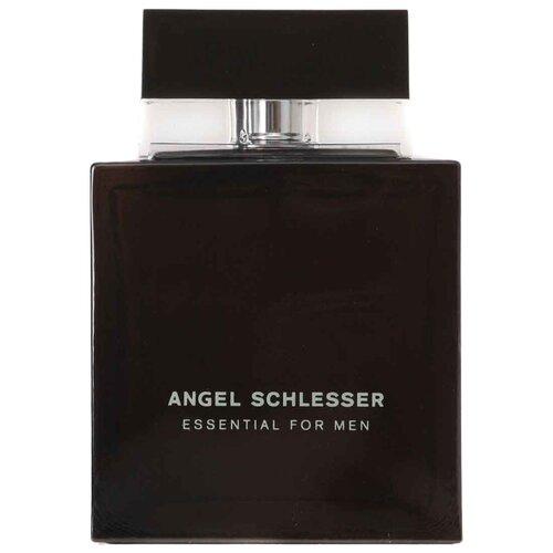 Туалетная вода Angel Schlesser Essential for Men, 100 мл