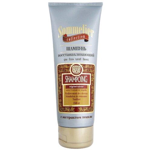 шампунь для волос dott solari cosmetics unico 250 мл восстанавливающий для всех типов Венец Сибири Sommelier collection шампунь Восстанавливающий для всех типов волос с экстрактом текилы 250 мл