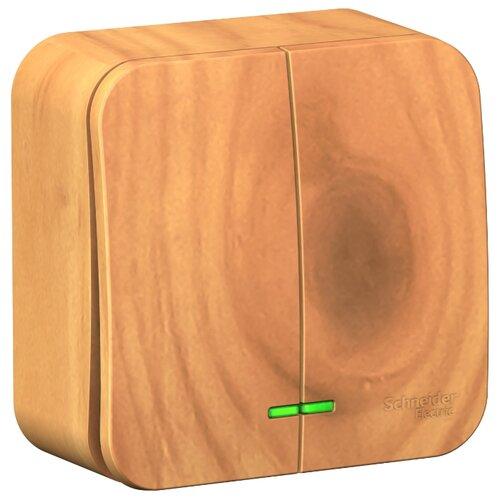 Выключатель 2х1-полюсный Schneider Electric Blanca BLNVA105105,10А, дерево фото