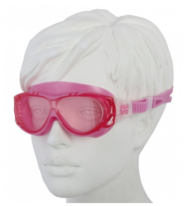Очки-маска для плавания Larsen DK6