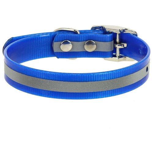 Ошейник КАСКАД Biotan (00212302) 20-24 см синий