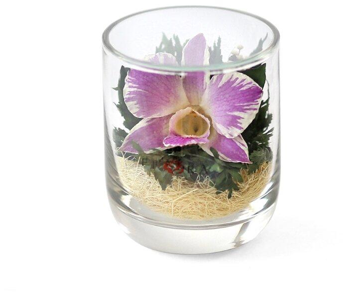Ваза с наполнением из живых цветов, сохраненных на 5 лет, Fiora, в стакане s-top 34855