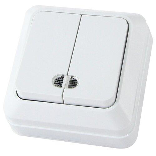 Выключатель 2х1-полюсный TDM ЕLECTRICSQ1801-0007 Ладога, 10 А, белый