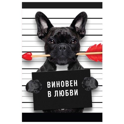 Открытка ND Play Виновен в любви (273849), 1 шт. открытка nd play happy birthday 273797 1 шт