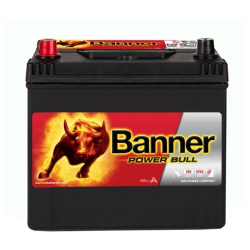 Автомобильный аккумулятор Banner Power Bull P60 69