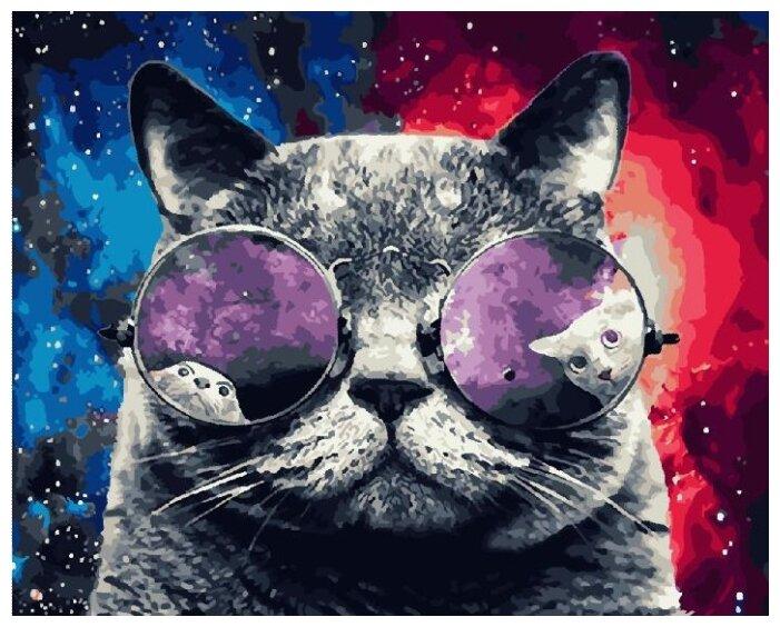 Купить Картины по Номерам на Холсте 40 х 50 см Космический кот - В очках Холст на Подрамнике по низкой цене с доставкой из Яндекс.Маркета (бывший Беру)