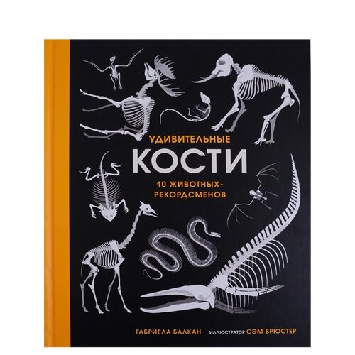 Купить Балкан Г. Удивительные кости. 10 животных-рекордсменов , Поляндрия, Познавательная литература