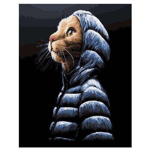 Купить ВанГогВоМне Картина по номерам Кот в пуховичке , 40х50 см (ZX 20266), Картины по номерам и контурам