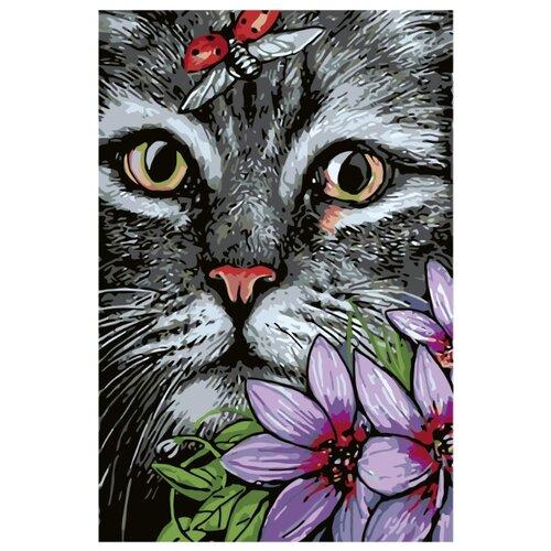 Купить Котик Раскраска картина по номерам на холсте A164 40х60, Живопись по номерам, Картины по номерам и контурам