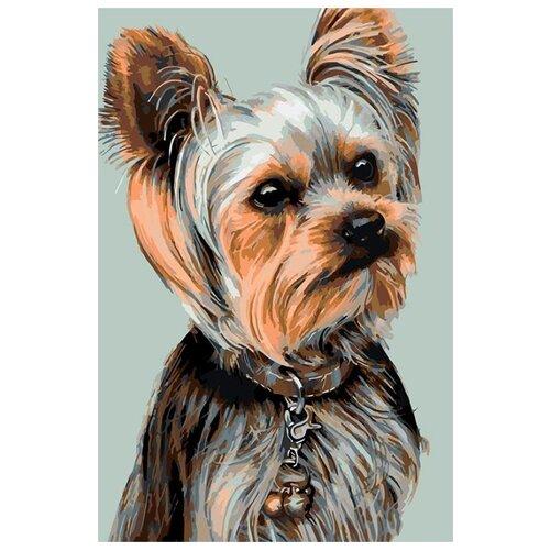 Купить Картина по номерам Живопись по Номерам Йоркширский терьер , 40x60 см, Живопись по номерам, Картины по номерам и контурам