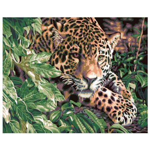 Леопард в зарослях Раскраска картина по номерам на холсте KTMK-77815 40х50 картина по номерам 40х50 см леопард в лесу gx8340