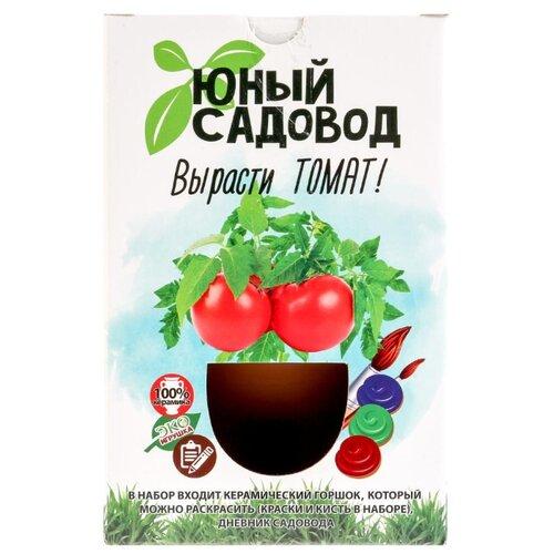 Фото - Набор для выращивания Инновации для детей Юный садовод. Вырасти томат набор для выращивания инновации для детей юный садовод вырасти петунию