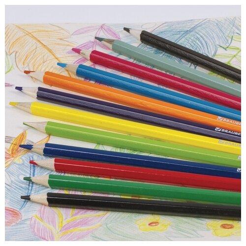 Купить BRAUBERG Карандаши цветные Star Patrol 12 цветные (180532), Цветные карандаши