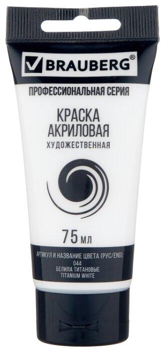 Купить BRAUBERG Краска акриловая художественная Профессиональная серия 75 мл белила титановые по низкой цене с доставкой из Яндекс.Маркета (бывший Беру)