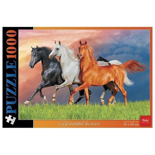 Купить Пазл Hatber Красивые лошади (1000ПЗ2_13357), 1000 дет., Пазлы