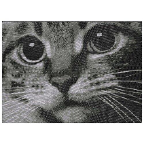 Купить Котёнок (рис. на габардине 29х39) (круговая техника) 29х39 Конек 9510, Конёк, Канва