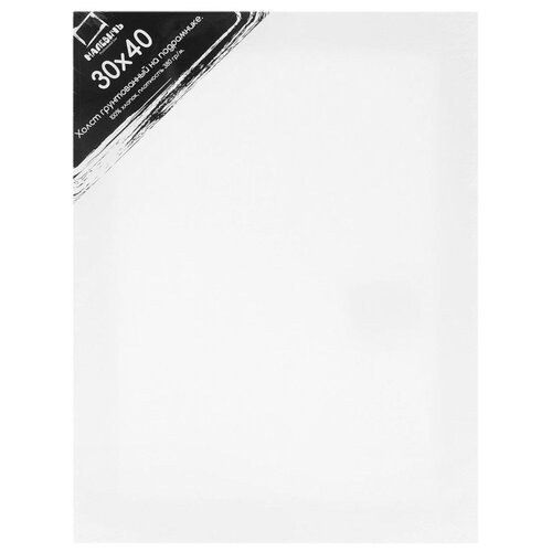 Холст Малевичъ на подрамнике 30x40 см (213040) printio холст 30x40