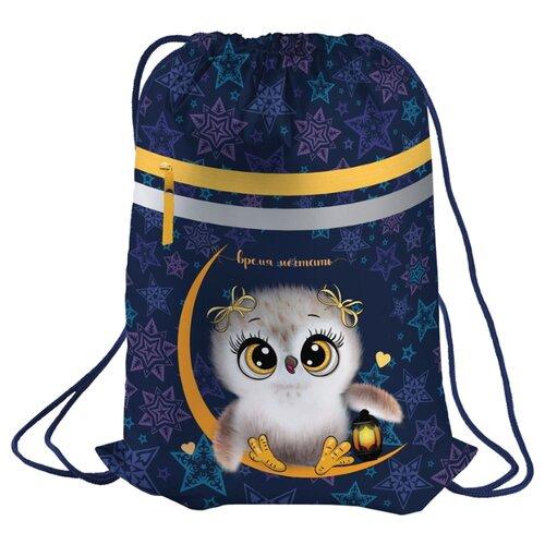 Berlingo Мешок для обуви Owl dream (MS09322) синий/фиолетовый, Мешки для обуви и формы  - купить со скидкой