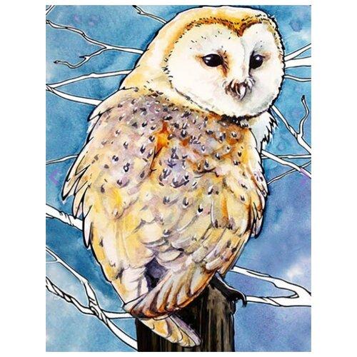Фото - Картина по номерам Амбарная сова, 30х40 см цветной картина по номерам белый тигр 30х40 см me1072