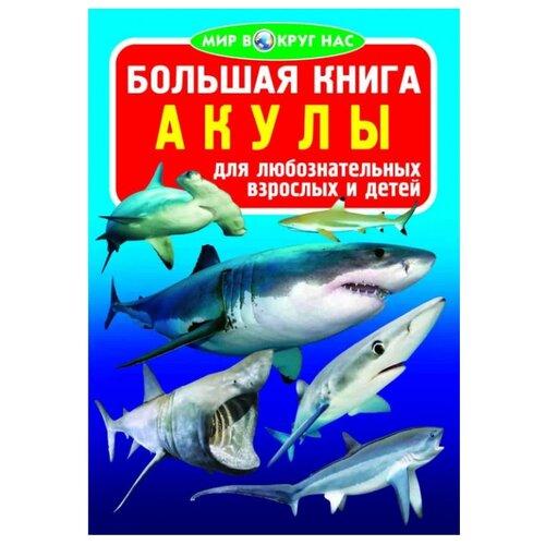"""Завязкин О. """"Мир вокруг нас. Большая книга. Акулы"""""""