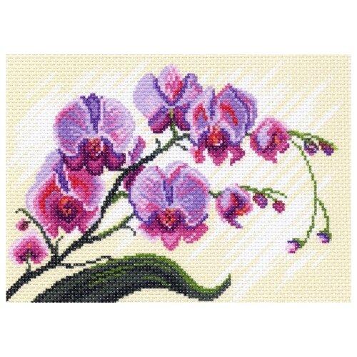 Купить Орхидеи, композиция Рисунок на канве 28/37 28х37 (18х25) Матренин Посад 1318-1, Матрёнин Посад, Канва