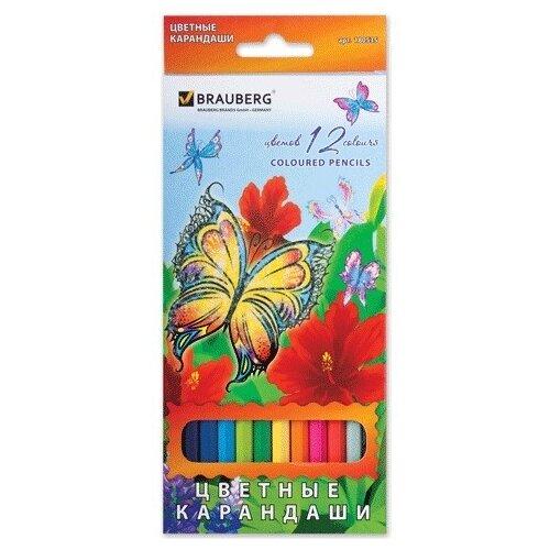 Купить BRAUBERG Карандаши цветные Wonderful butterfly, 12 цветов с блестками (180535), Цветные карандаши