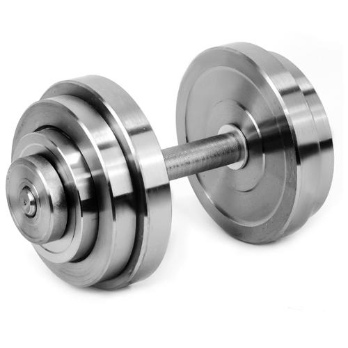 Гантель разборная Атлант-Спорт металлическая разборная 28 кг серебристый