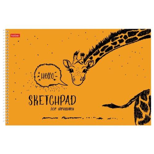 Альбом для рисования Hatber SketchPad 29.7 х 21 см (A4), 100 г/м², 40 л. альбом для рисования hatber любимцы 40 листов 18309