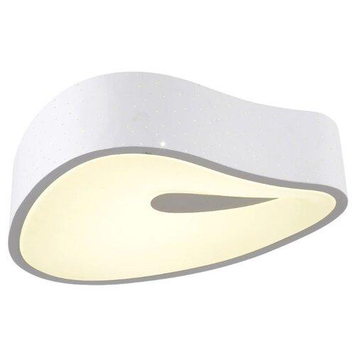 Светильник светодиодный Omnilux OML-45507-53, LED, 53 Вт omnilux потолочный светодиодный светильник omnilux oml 452 oml 45207 51