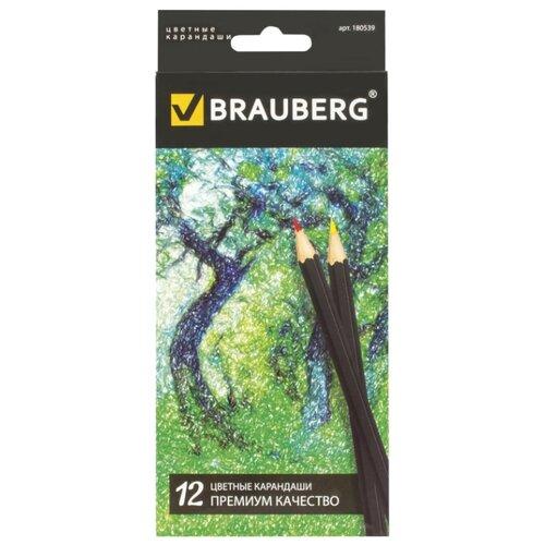 Купить BRAUBERG Карандаши цветные Artist line 12 цветов (180539), Цветные карандаши