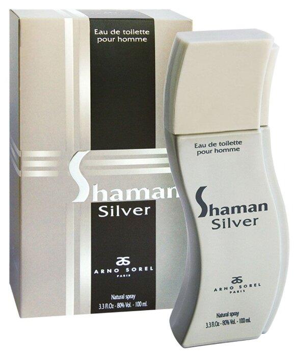 Купить Туалетная вода Arno Sorel Shaman Silver, 100 мл по низкой цене с доставкой из Яндекс.Маркета (бывший Беру)