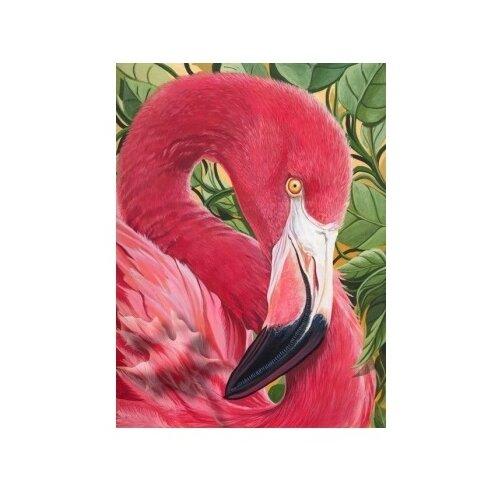 Купить Рыжий кот Набор алмазной вышивки Фламинго (AS22057) 22х32см, Алмазная вышивка