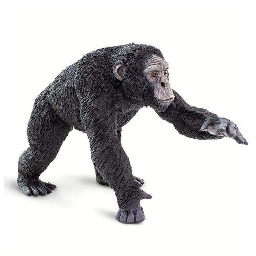 Фото - Фигурка Safari Ltd Wonderful Wildlife Шимпанзе 100302 фигурка safari ltd wildlife детёныш жирафа 100422