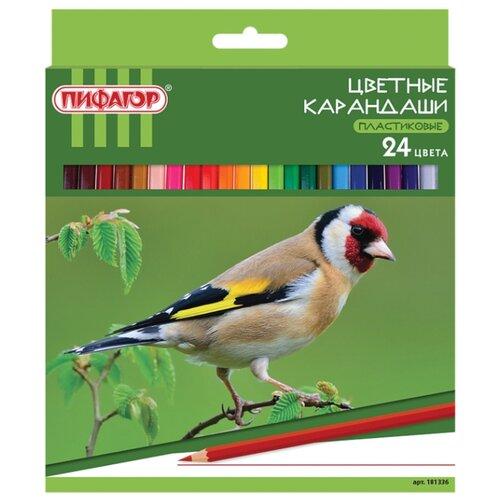 Купить Пифагор Карандаши цветные Лесные жители 24 цвета (181336), Цветные карандаши