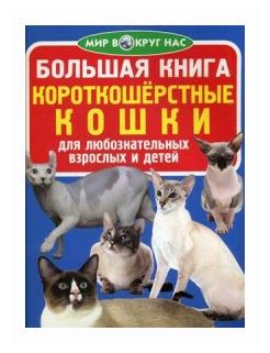 """Завязкин Олег Владимирович """"Большая книга. Короткошерстные кошки. Для любознательных взрослых и детей"""""""
